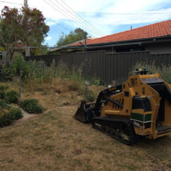 theodore-mini-digger-landscaping-canberra