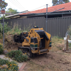 theodore-mini-digger-landscaping-canberra2